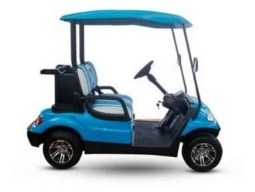 2021 Advanced EV 2 Seat Electric Cart