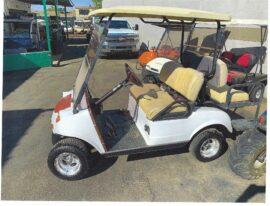 Evo Electric 4 seater $3000