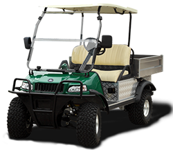 Evolution Golf Cart New