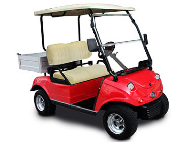 Evolution Turfman 200 Golf Cart